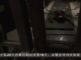 chinese unshaded servitude